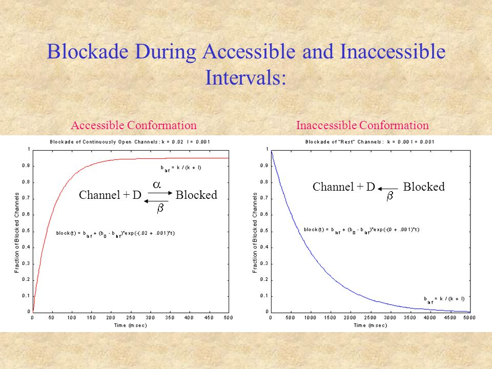 Blockade During Accessible and Inaccessible Intervals: Channel + D Blocked Channel + D Blocked Accessible ConformationInaccessible Conformation