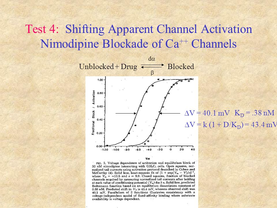 Test 4: Shifting Apparent Channel Activation Nimodipine Blockade of Ca ++ Channels Unblocked + Drug Blocked d V = 40.1 mV V = k (1 + D/K D ) = 43.4 mV K D =.38 nM