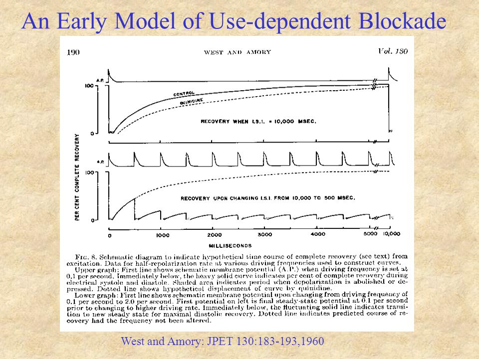 An Early Model of Use-dependent Blockade West and Amory: JPET 130:183-193,1960