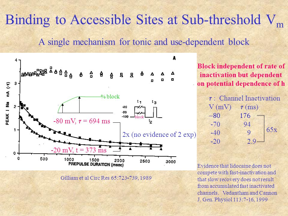Binding to Accessible Sites at Sub-threshold V m A single mechanism for tonic and use-dependent block -80 mV, = 694 ms -20 mV, t = 373 ms Gilliam et al Circ Res 65:723-739, 1989 : Channel Inactivation V (mV) (ms) -70 94 -40 9 -20 2.9 Block independent of rate of inactivation but dependent on potential dependence of h Evidence that lidocaine does not compete with fast-inactivation and that slow recovery does not result from accumulated fast inactivated channels.