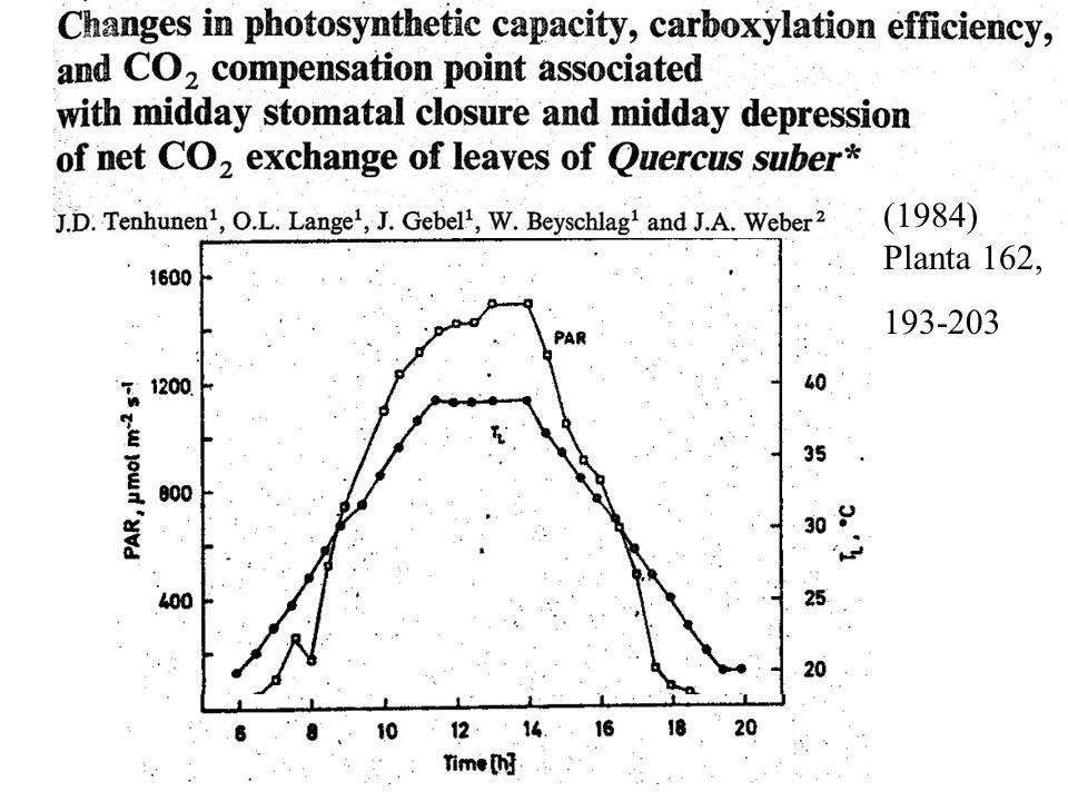 (1984) Planta 162, 193-203