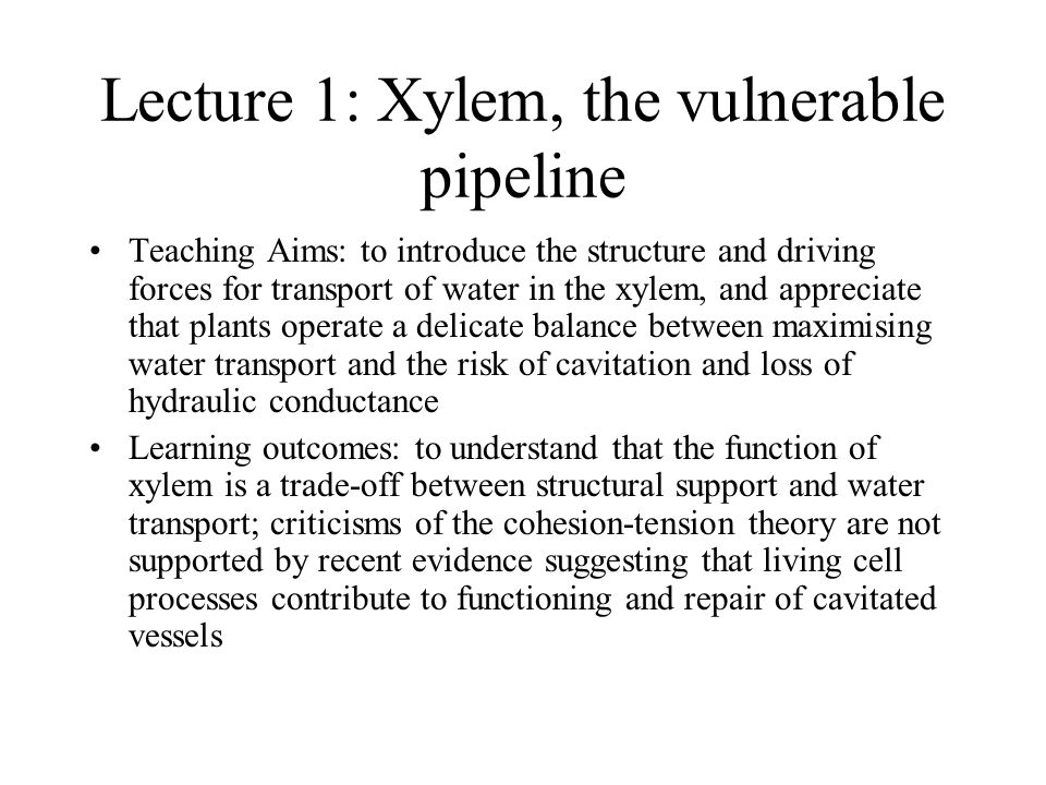 Lecture 1: Xylem, the vulnerable pipeline Teaching Aims: to introduce the structure and driving forces for transport of water in the xylem, and apprec