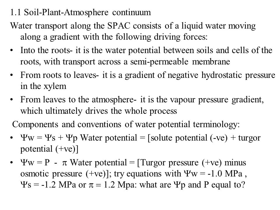 Water transport along the SPAC consists of a liquid water moving along a gradient with the following driving forces: Into the roots- it is the water p