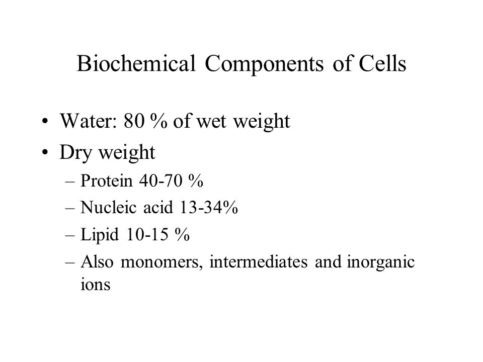Biochemical Components of Cells Water: 80 % of wet weight Dry weight –Protein 40-70 % –Nucleic acid 13-34% –Lipid 10-15 % –Also monomers, intermediate