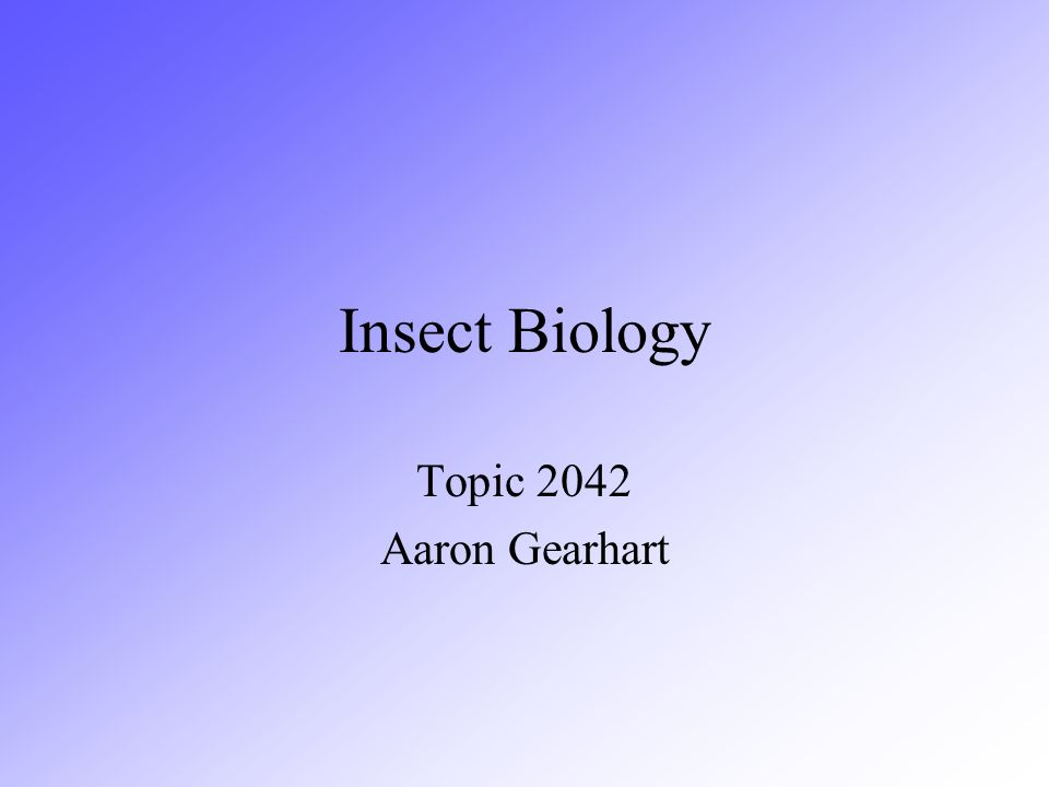 Biology of Insects This lecture will go over the following topics Insect Body –Head –Thorax –abdomen Insect Life Cycles –No metamorphosis –Gradual metamorphosis –Incomplete metamorphosis –Complete metamorphosis http://www.ent.iastate.edu/list/images.html