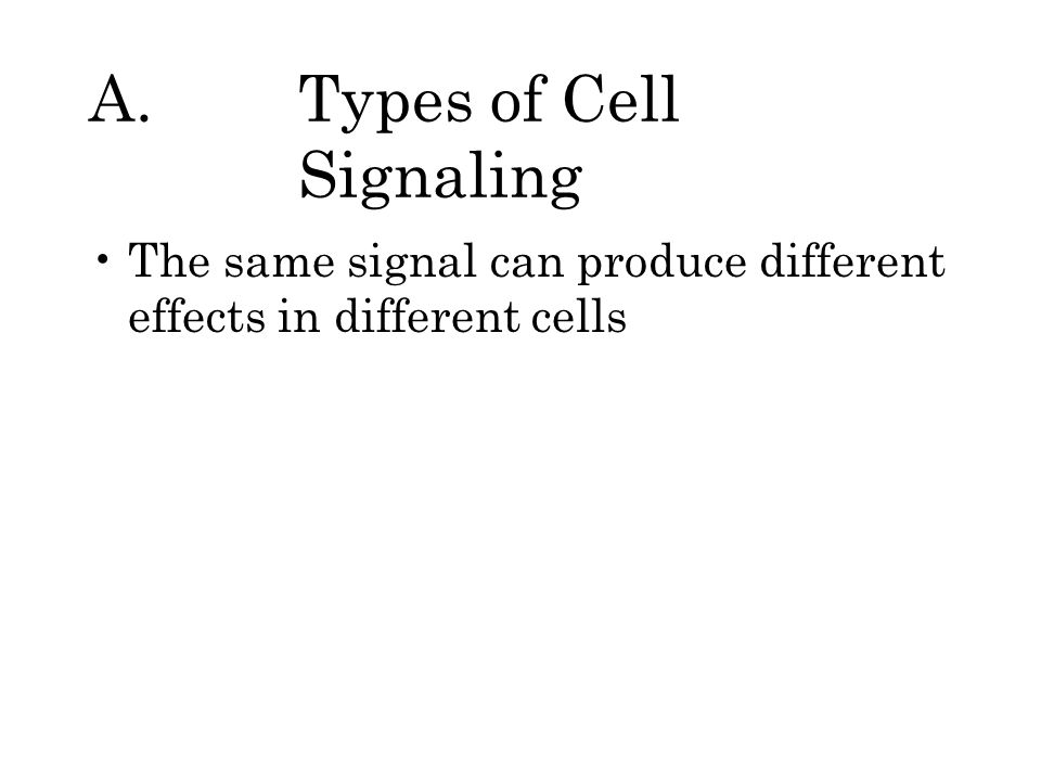 A.Types of Cell Signaling The same signal can produce different effects in different cells