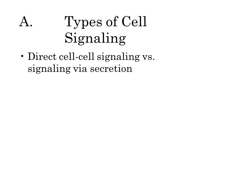 A.Types of Cell Signaling Direct cell-cell signaling vs. signaling via secretion