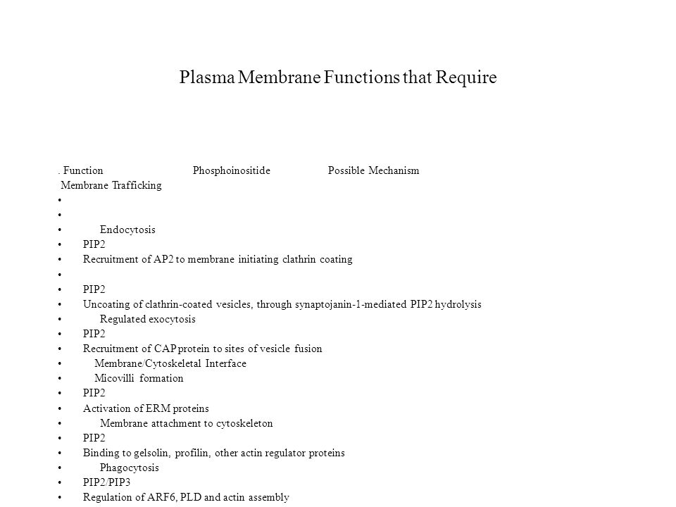 Plasma Membrane Functions that Require. Function Phosphoinositide Possible Mechanism Membrane Trafficking Endocytosis PIP2 Recruitment of AP2 to membr