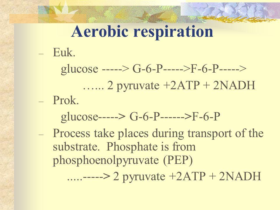 Aerobic respiration – Euk. glucose -----> G-6-P----->F-6-P-----> …... 2 pyruvate +2ATP + 2NADH – Prok. glucose-----> G-6-P------>F-6-P – Process take