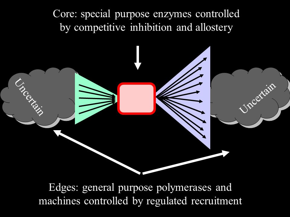 Core: special purpose enzymes controlled by competitive inhibition and allostery Edges: general purpose polymerases and machines controlled by regulated recruitment Uncertain