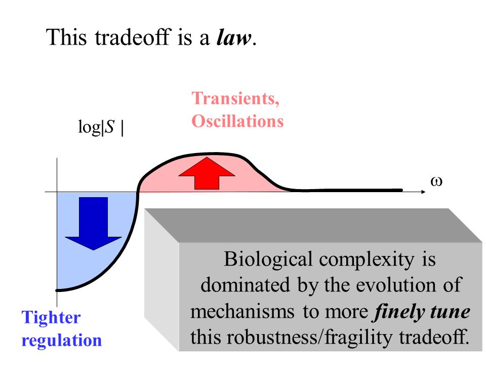 log|S | Tighter regulation Transients, Oscillations Biological complexity is dominated by the evolution of mechanisms to more finely tune this robustness/fragility tradeoff.