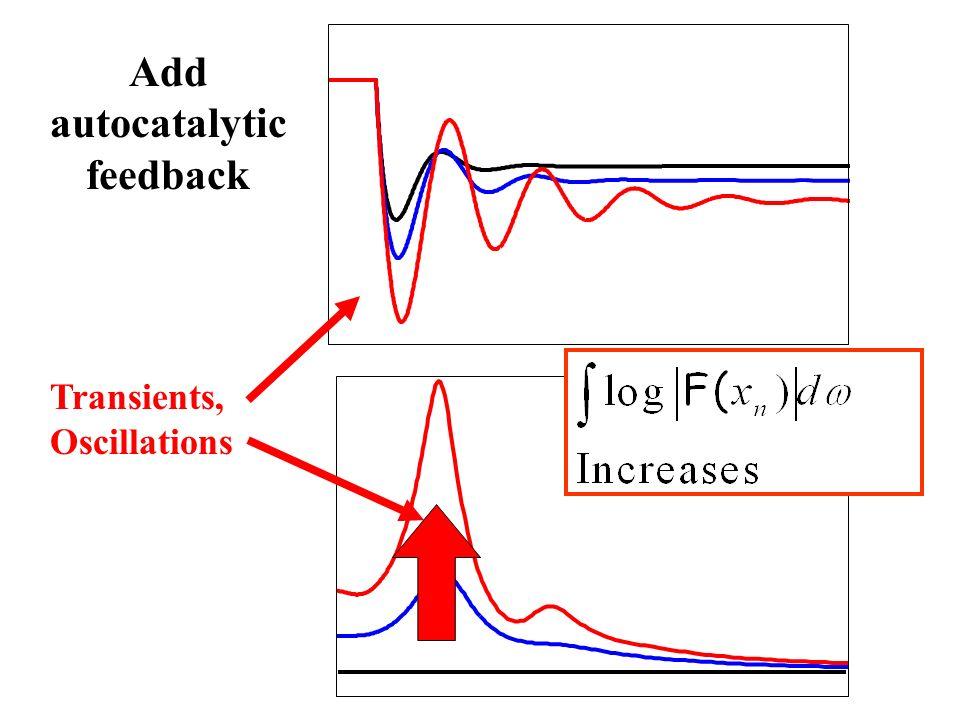 Add autocatalytic feedback Transients, Oscillations