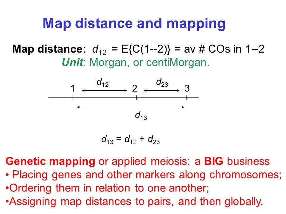 Map distance: d 12 = E{C(1--2)} = av # COs in 1--2 Unit: Morgan, or centiMorgan.