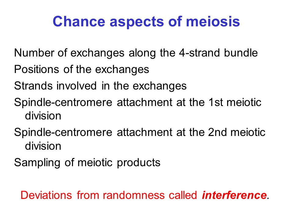 A stochastic model for meiosis A point process X for exchanges along the 4-strand bundle A model for determining strand involvement in exchanges A model for determining the outcomes of spindle- centromere attachments at both meiotic divisions A sampling model for meiotic products Random at all stages defines the no-interference or Poisson model.