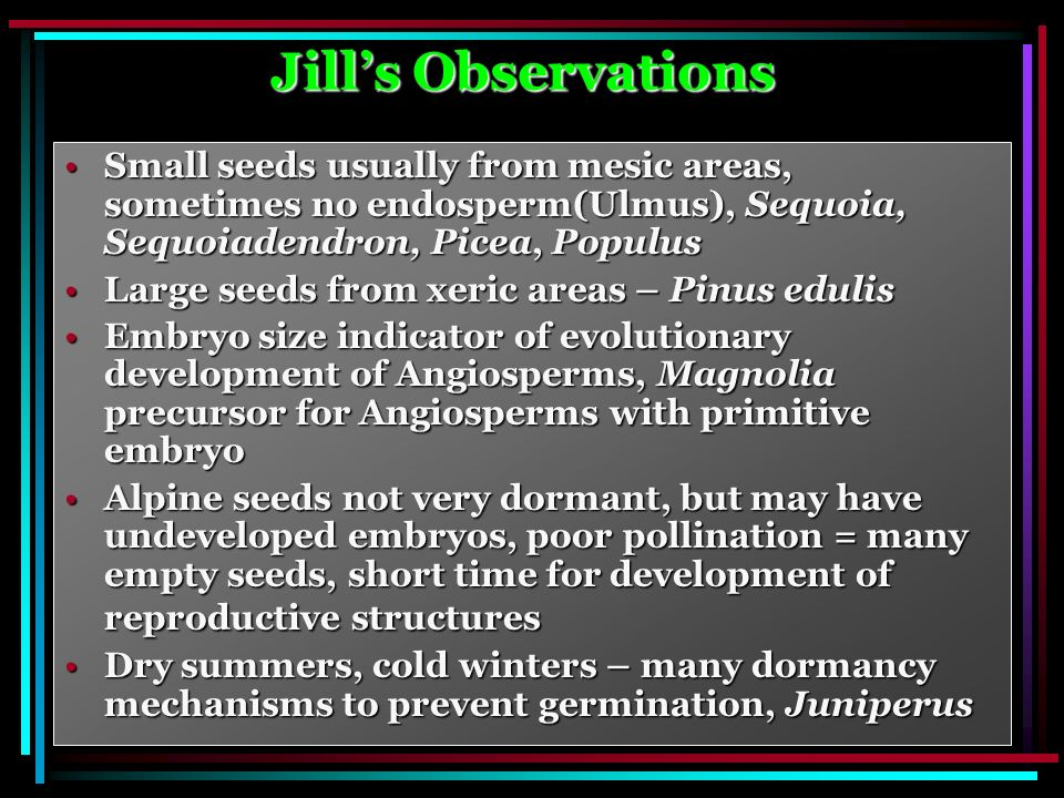 Jills Observations Small seeds usually from mesic areas, sometimes no endosperm(Ulmus), Sequoia, Sequoiadendron, Picea, PopulusSmall seeds usually from mesic areas, sometimes no endosperm(Ulmus), Sequoia, Sequoiadendron, Picea, Populus Large seeds from xeric areas – Pinus edulisLarge seeds from xeric areas – Pinus edulis Embryo size indicator of evolutionary development of Angiosperms, Magnolia precursor for Angiosperms with primitive embryoEmbryo size indicator of evolutionary development of Angiosperms, Magnolia precursor for Angiosperms with primitive embryo Alpine seeds not very dormant, but may have undeveloped embryos, poor pollination = many empty seeds, short time for development of reproductive structuresAlpine seeds not very dormant, but may have undeveloped embryos, poor pollination = many empty seeds, short time for development of reproductive structures Dry summers, cold winters – many dormancy mechanisms to prevent germination, JuniperusDry summers, cold winters – many dormancy mechanisms to prevent germination, Juniperus