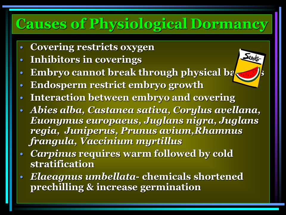 Causes of Physiological Dormancy Covering restricts oxygenCovering restricts oxygen Inhibitors in coveringsInhibitors in coverings Embryo cannot break