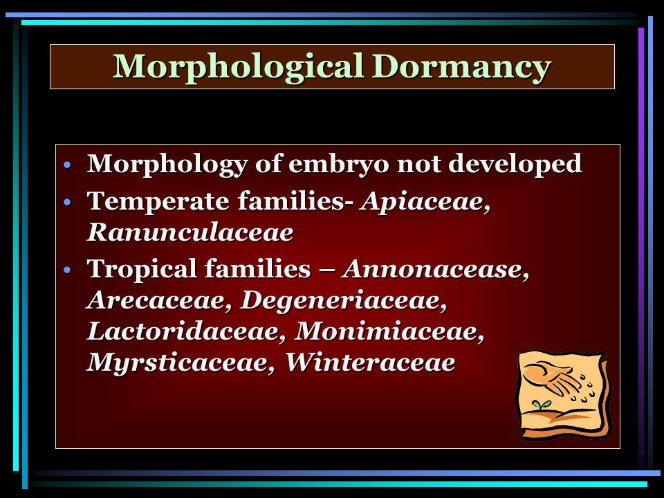 Morphological Dormancy Morphology of embryo not developedMorphology of embryo not developed Temperate families- Apiaceae, RanunculaceaeTemperate famil