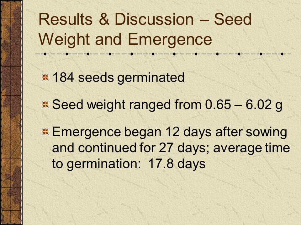 Results & Discussion – Seed Weight and Emergence 184 seeds germinated Seed weight ranged from 0.65 – 6.02 g Emergence began 12 days after sowing and c