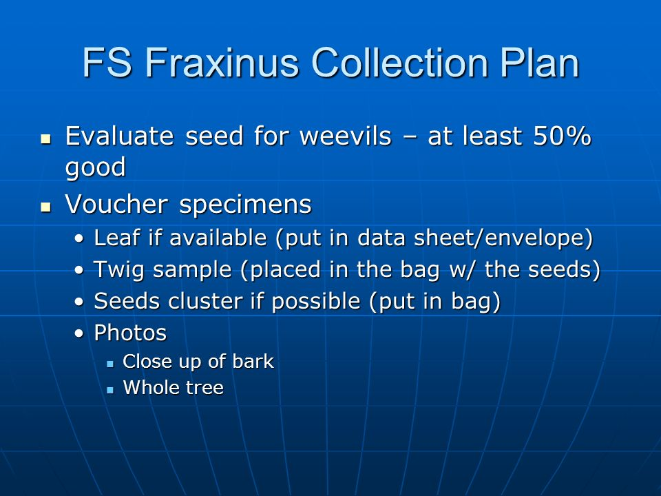 FS Fraxinus Collection Plan Evaluate seed for weevils – at least 50% good Evaluate seed for weevils – at least 50% good Voucher specimens Voucher spec