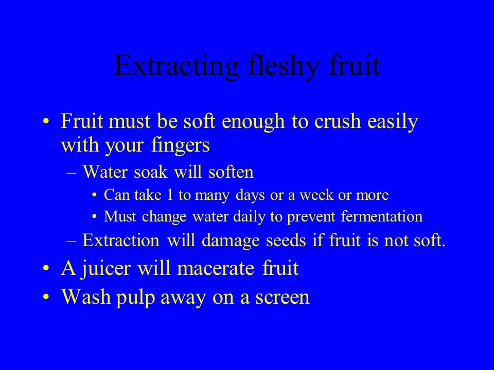 Extracting fleshy fruit Fruit must be soft enough to crush easily with your fingers –Water soak will soften Can take 1 to many days or a week or more