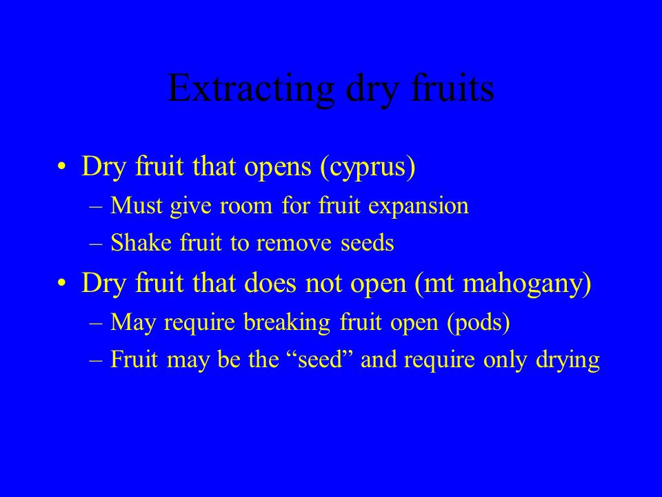 Extracting dry fruits Dry fruit that opens (cyprus) –Must give room for fruit expansion –Shake fruit to remove seeds Dry fruit that does not open (mt