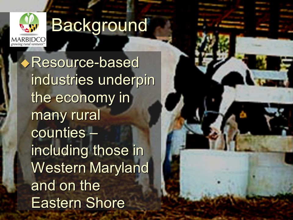 Background Resource-based industries underpin the economy in many rural counties – including those in Western Maryland and on the Eastern Shore Resource-based industries underpin the economy in many rural counties – including those in Western Maryland and on the Eastern Shore