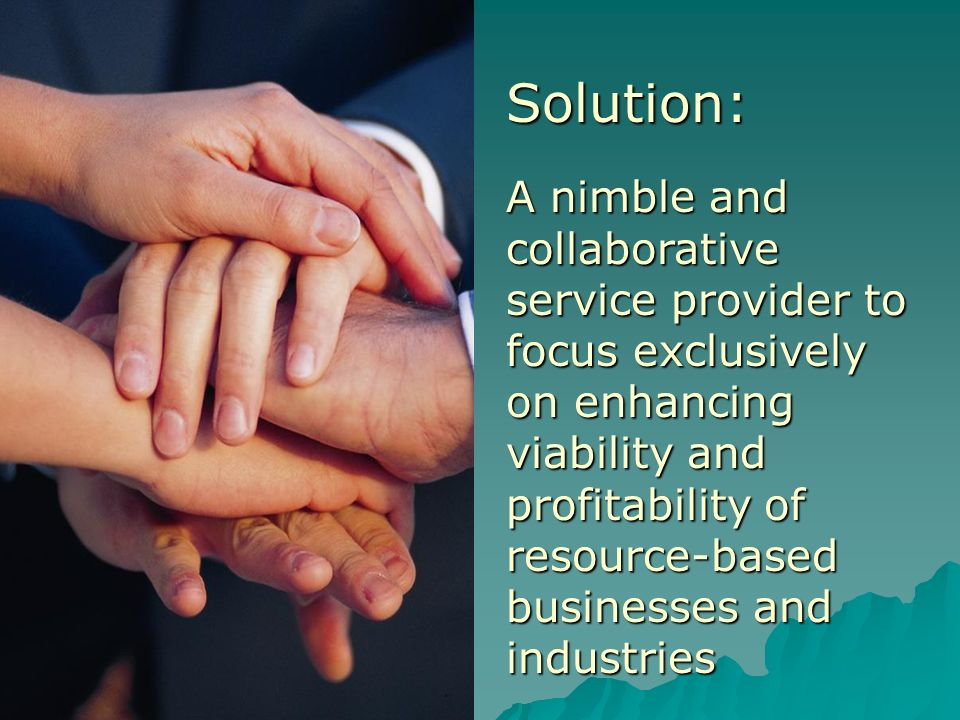 Solution: A nimble and collaborative service provider to focus exclusively on enhancing viability and profitability of resource-based businesses and industries