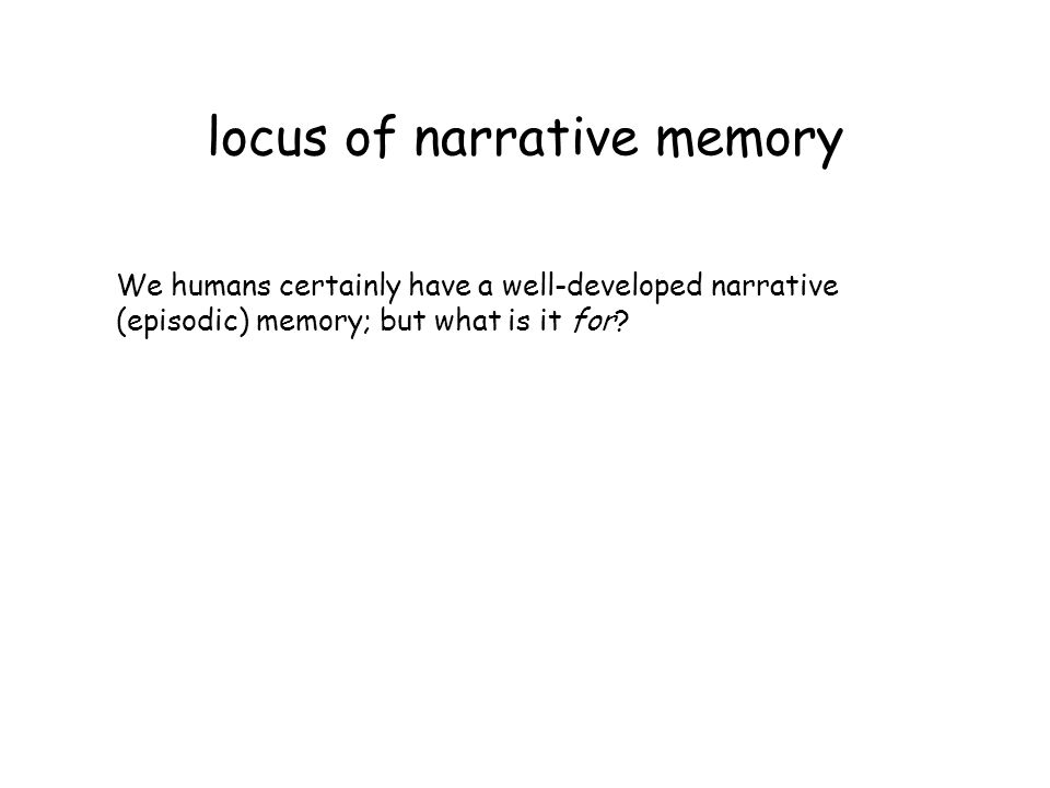 locus of narrative memory We humans certainly have a well-developed narrative (episodic) memory; but what is it for?