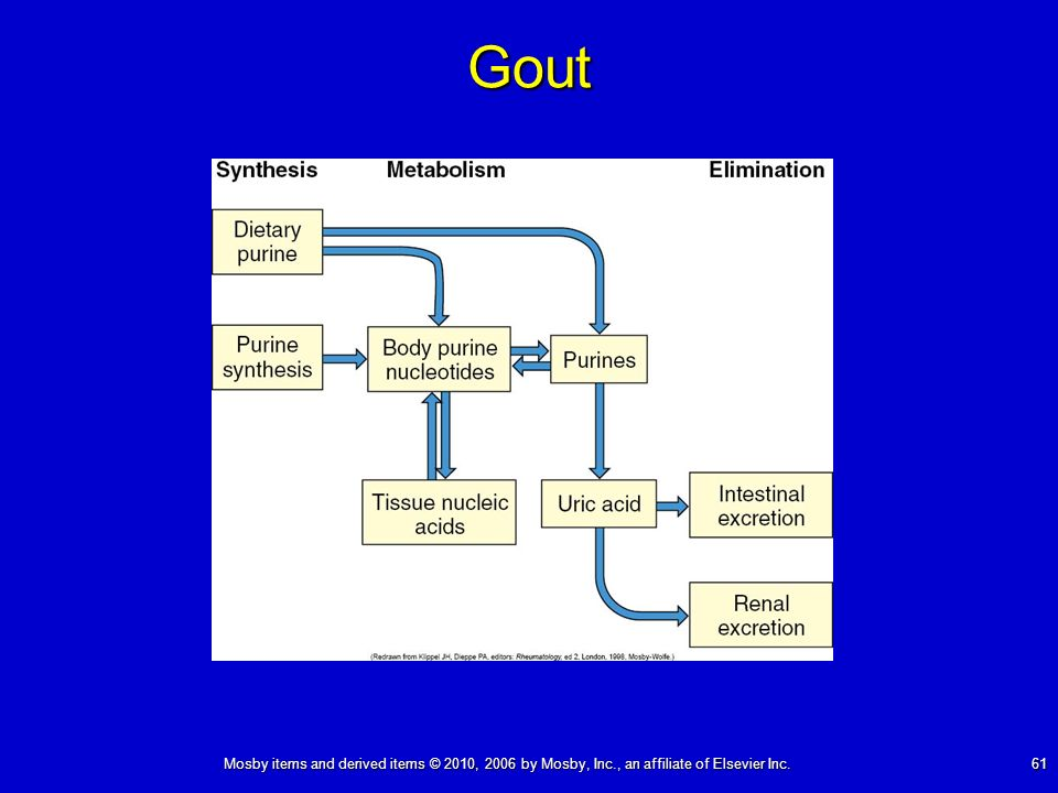 Mosby items and derived items © 2010, 2006 by Mosby, Inc., an affiliate of Elsevier Inc. 61 Gout