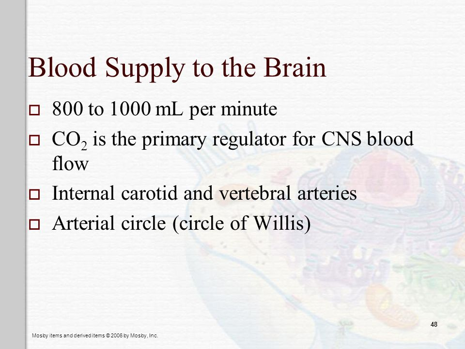 Mosby items and derived items © 2006 by Mosby, Inc. 48 Blood Supply to the Brain 800 to 1000 mL per minute CO 2 is the primary regulator for CNS blood
