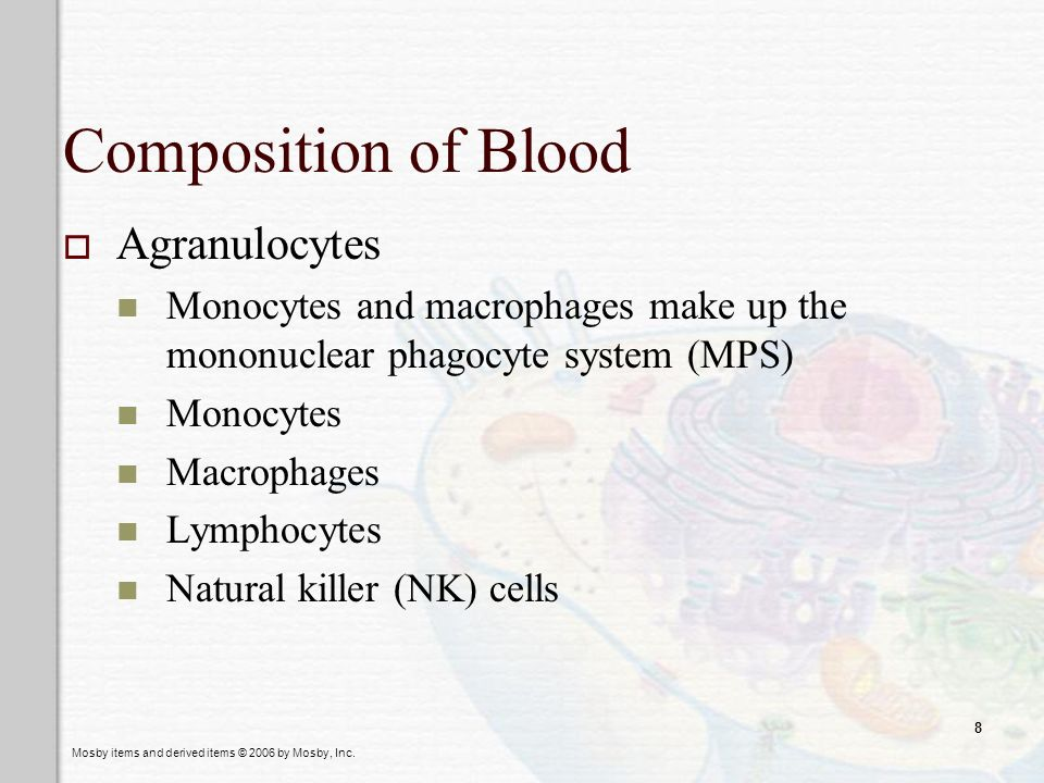 Mosby items and derived items © 2006 by Mosby, Inc. 8 Composition of Blood Agranulocytes Monocytes and macrophages make up the mononuclear phagocyte s