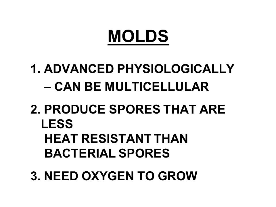 MOLDS 1. ADVANCED PHYSIOLOGICALLY – CAN BE MULTICELLULAR 2. PRODUCE SPORES THAT ARE LESS HEAT RESISTANT THAN BACTERIAL SPORES 3. NEED OXYGEN TO GROW
