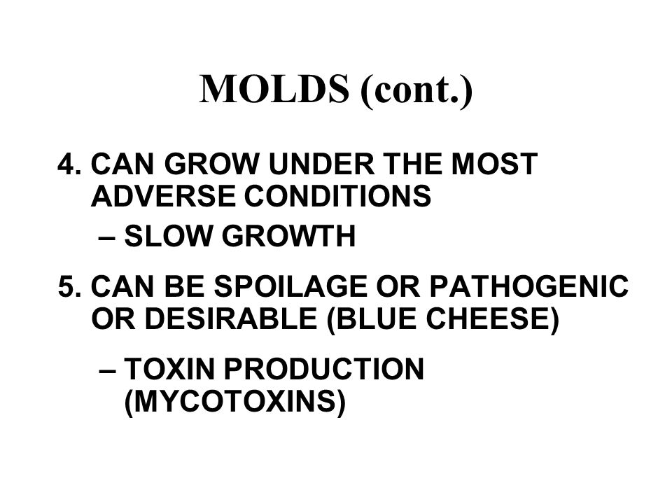 MOLDS (cont.) 4. CAN GROW UNDER THE MOST ADVERSE CONDITIONS – SLOW GROWTH 5. CAN BE SPOILAGE OR PATHOGENIC OR DESIRABLE (BLUE CHEESE) – TOXIN PRODUCTI