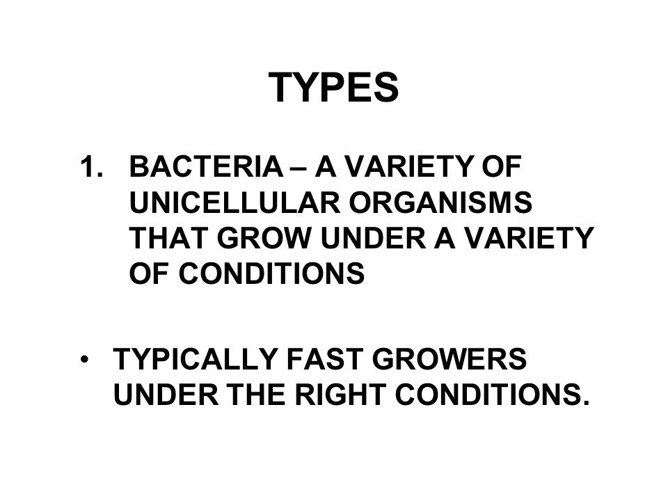 TYPES 1. BACTERIA – A VARIETY OF UNICELLULAR ORGANISMS THAT GROW UNDER A VARIETY OF CONDITIONS TYPICALLY FAST GROWERS UNDER THE RIGHT CONDITIONS.