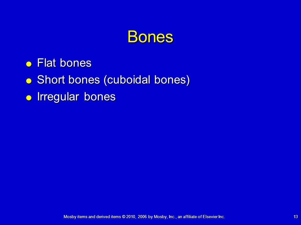 Mosby items and derived items © 2010, 2006 by Mosby, Inc., an affiliate of Elsevier Inc. 13 Bones Flat bones Flat bones Short bones (cuboidal bones) S