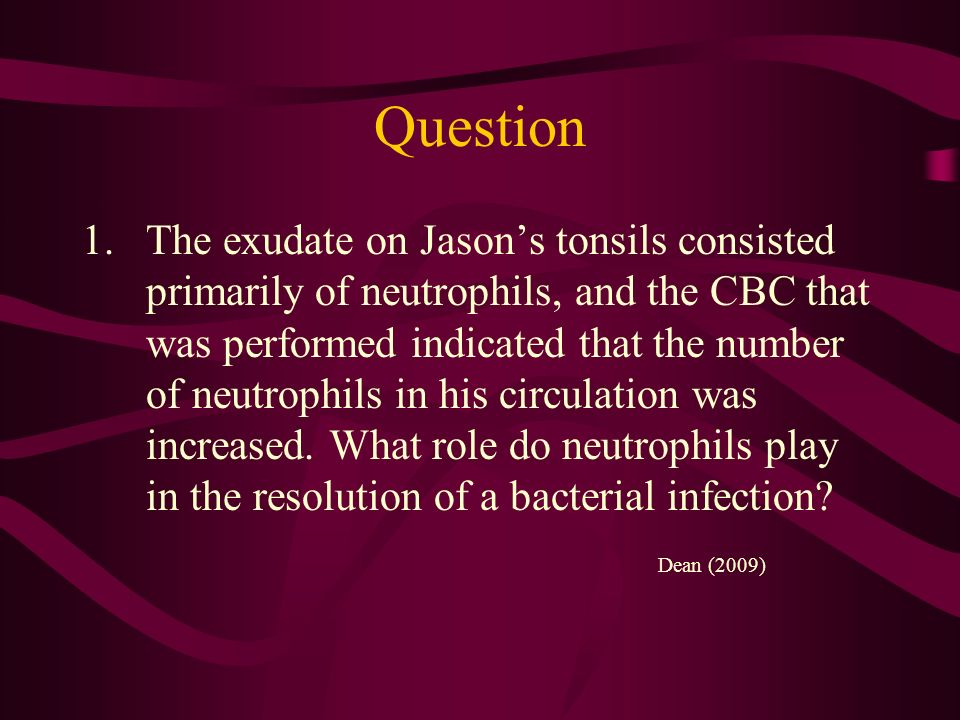 Question 1.The exudate on Jasons tonsils consisted primarily of neutrophils, and the CBC that was performed indicated that the number of neutrophils i