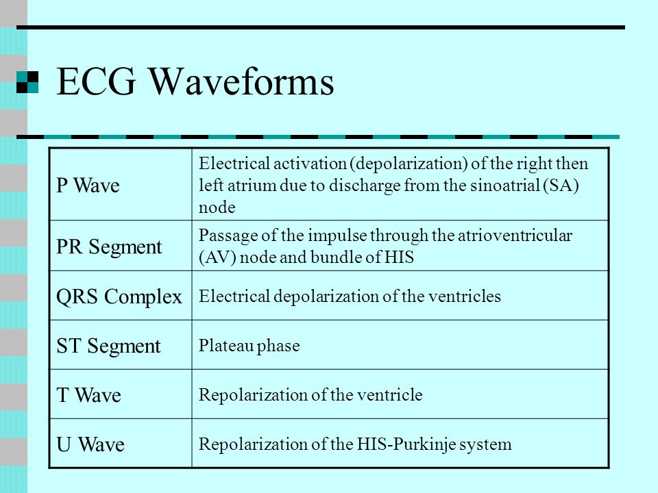 ECG Waveforms P Wave Electrical activation (depolarization) of the right then left atrium due to discharge from the sinoatrial (SA) node PR Segment Pa