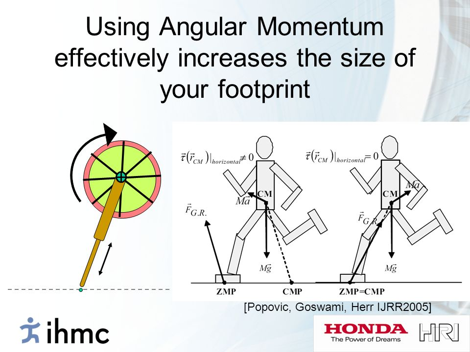 Using Angular Momentum effectively increases the size of your footprint [Popovic, Goswami, Herr IJRR2005]