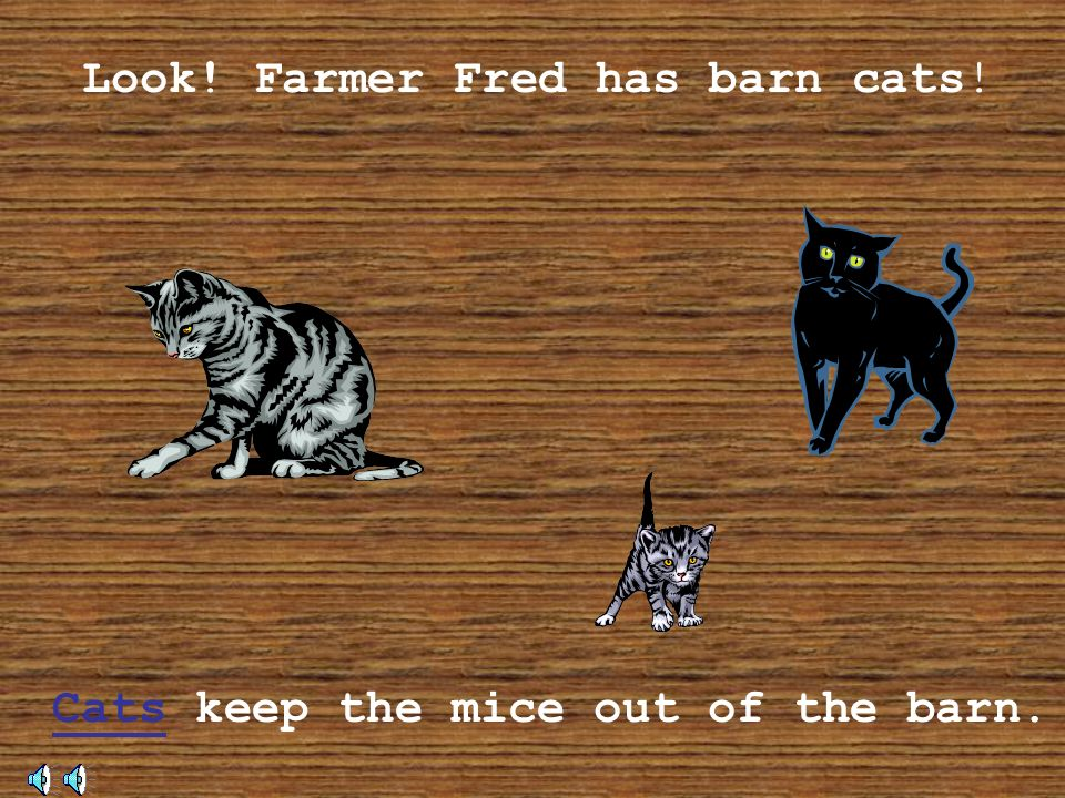 Now you know all about the animals on my farm, thank you for visiting! Come back again!