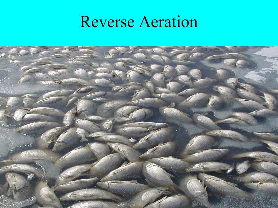 Reverse Aeration