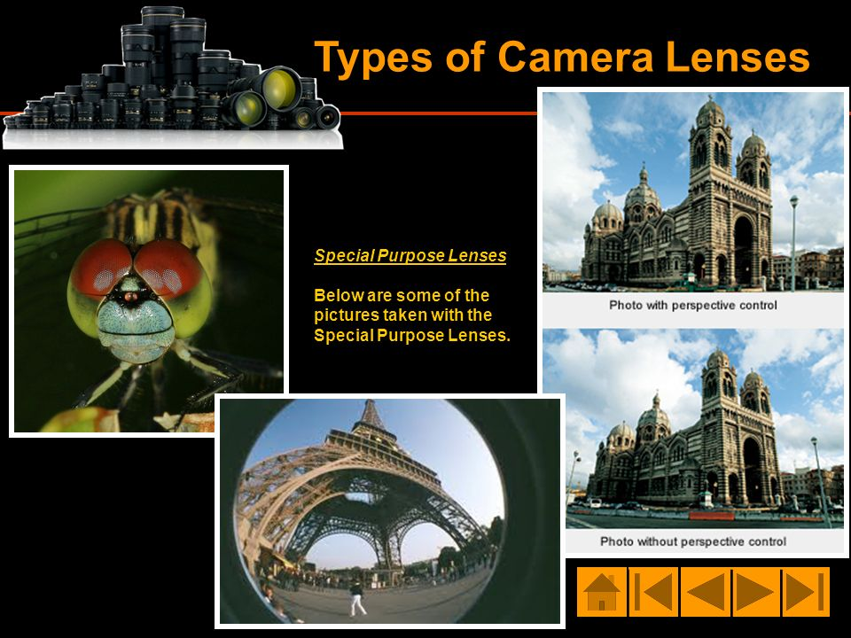 Types of Camera Lenses Special Purpose Lenses Below are some of the pictures taken with the Special Purpose Lenses.