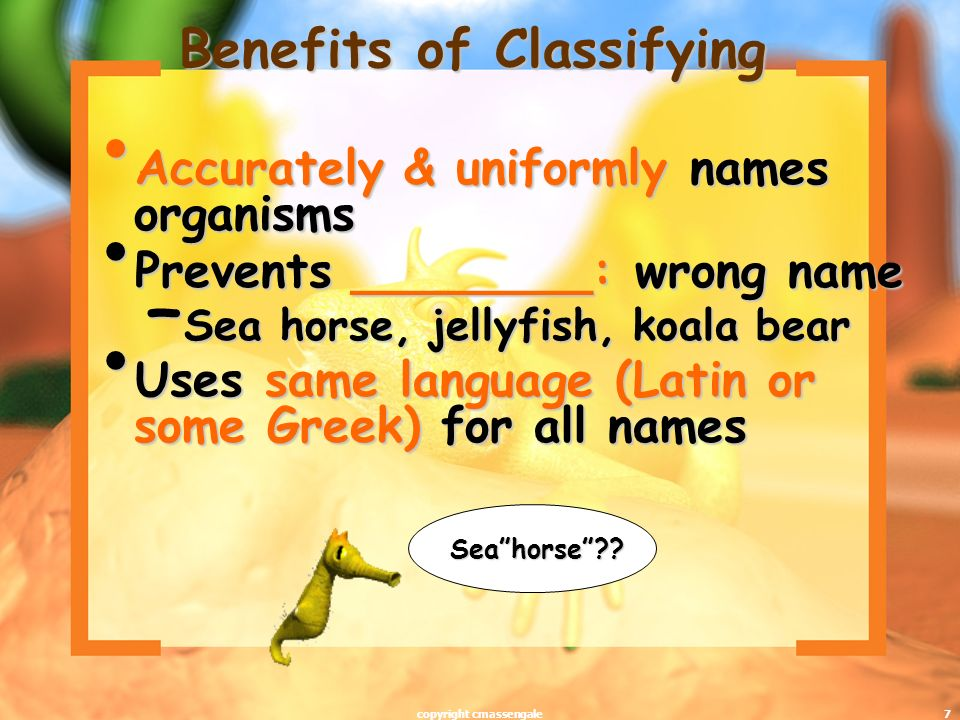 7 Benefits of Classifying Accurately & uniformly names organisms Accurately & uniformly names organisms Prevents ________: wrong name Prevents ________: wrong name – Sea horse, jellyfish, koala bear Uses same language (Latin or some Greek) for all names Uses same language (Latin or some Greek) for all names Seahorse?.