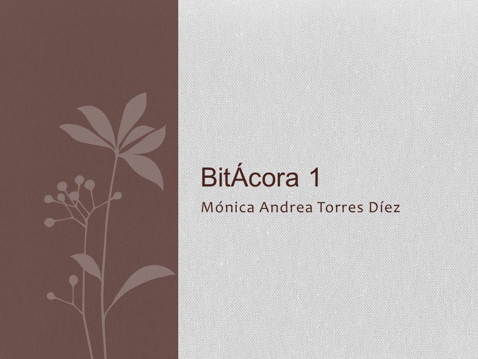 Mónica Andrea Torres Díez BitÁcora 1