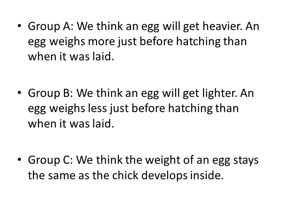 Group A: We think an egg will get heavier. An egg weighs more just before hatching than when it was laid. Group B: We think an egg will get lighter. A