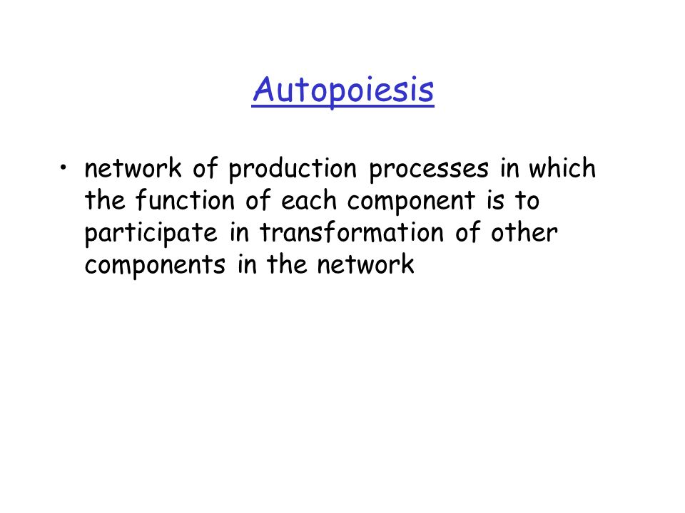 Autopoiesis network of production processes in which the function of each component is to participate in transformation of other components in the network