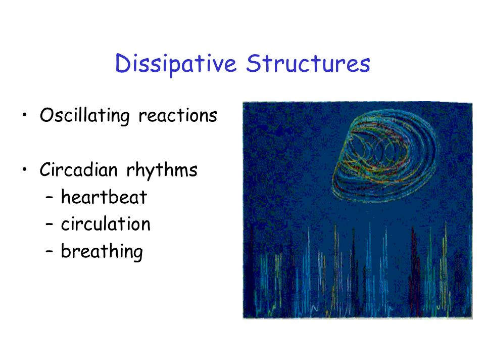 Dissipative Structures Oscillating reactions Circadian rhythms –heartbeat –circulation –breathing