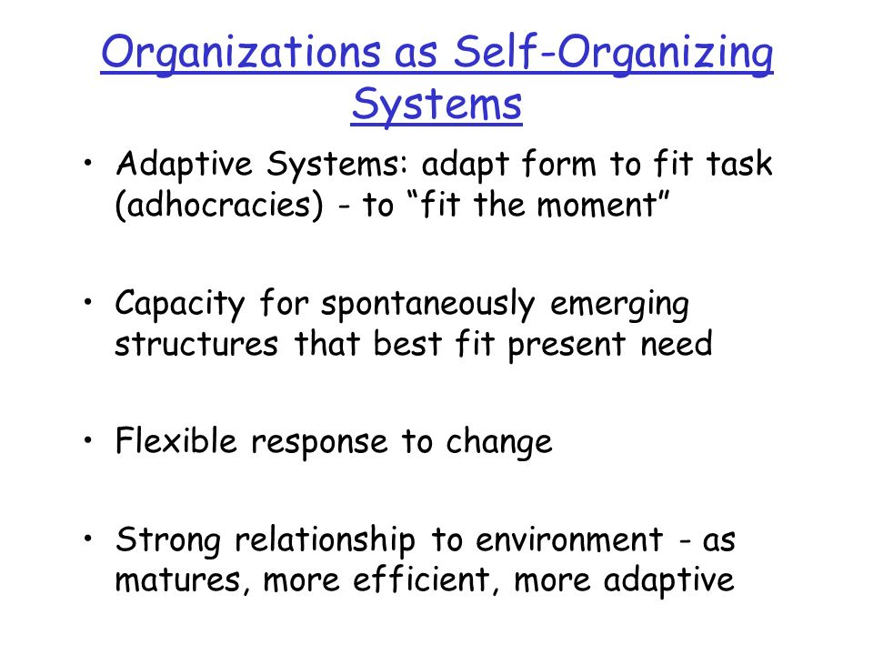 Organizations as Self-Organizing Systems Adaptive Systems: adapt form to fit task (adhocracies) - to fit the moment Capacity for spontaneously emerging structures that best fit present need Flexible response to change Strong relationship to environment - as matures, more efficient, more adaptive