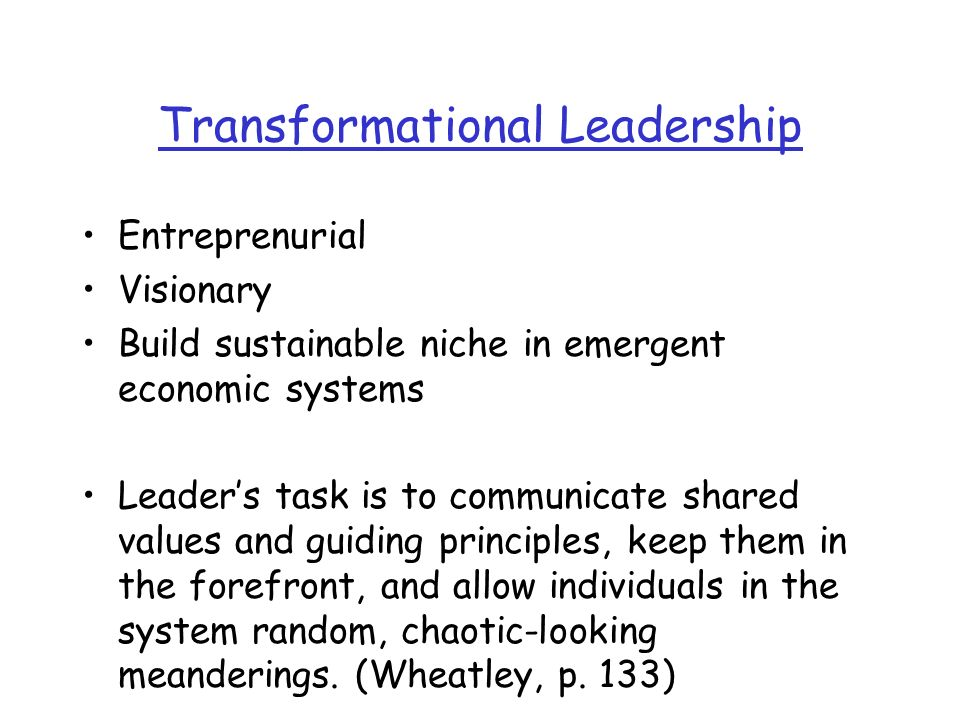 Transformational Leadership Entreprenurial Visionary Build sustainable niche in emergent economic systems Leaders task is to communicate shared values and guiding principles, keep them in the forefront, and allow individuals in the system random, chaotic-looking meanderings.