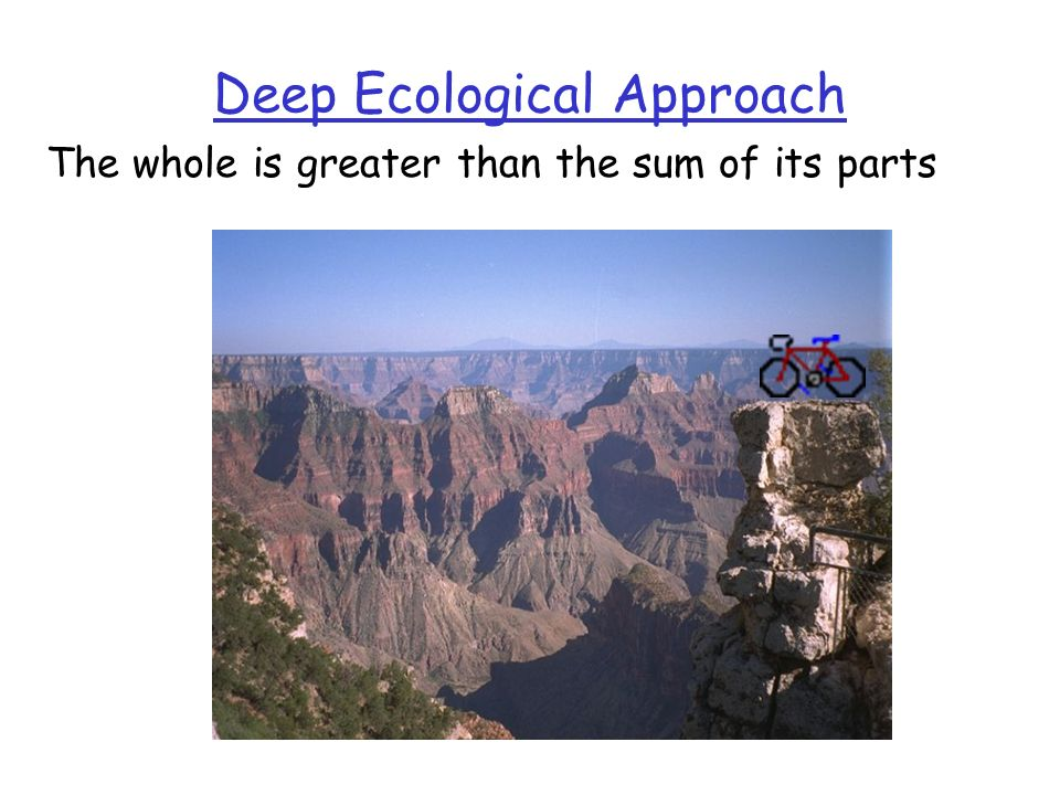 Deep Ecological Approach The whole is greater than the sum of its parts