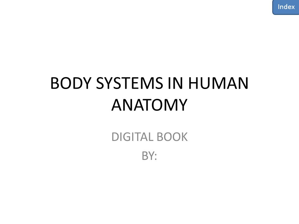 BODY SYSTEMS IN HUMAN ANATOMY DIGITAL BOOK BY: Index